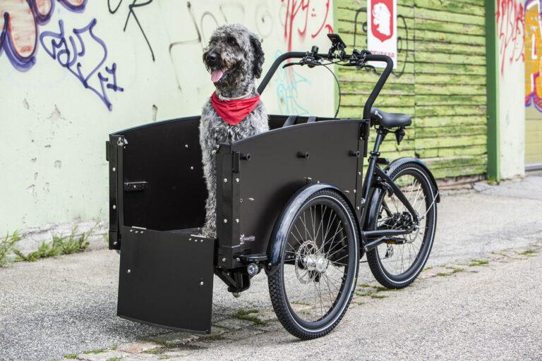 Cargobike dog