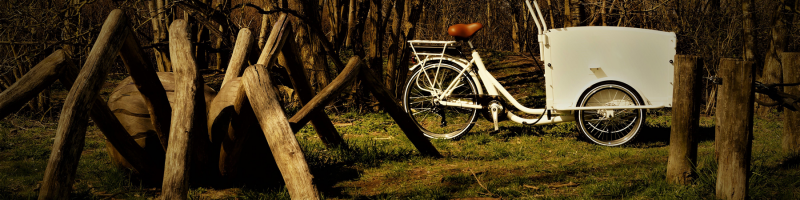 Wildenburg hvid el-ladcykel